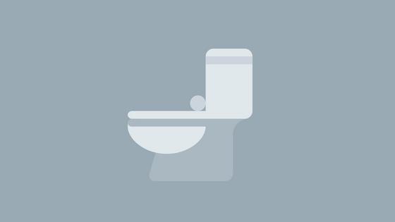 perfect toilet