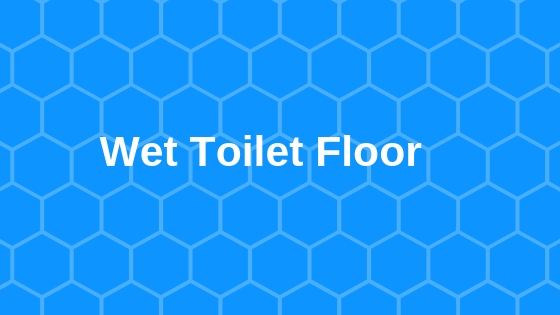 wet toilet floor
