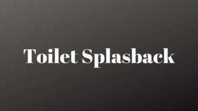 toilet splashback