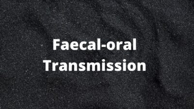 Faecal-oral transmission