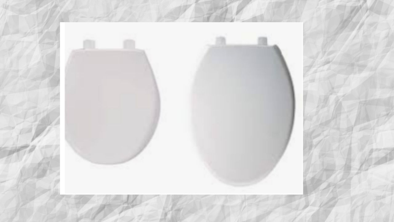 curved toilet seat